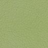 Santorini 406 зеленый